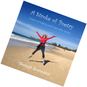 A Stroke of Poetry by Shelagh Brennand